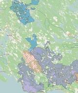 Более 33 % лесов Ленинградской области находится в пользовании FSC-сертифицированных предприятий