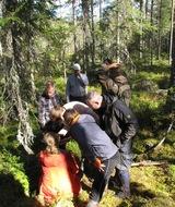 В Ленинградской области состоялся природоохранный семинар по проблемам ценных лесов.