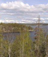 РОО «Новый экологический проект» выиграла конкурс  президентских грантов для НКО