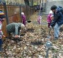 Петербургу - новые школьные питомники