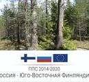 """Планируемый заказник """"Моторное-Заостровье"""": обследования продолжаются"""