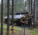 Прокуратура и чиновники нашли в лесах дома